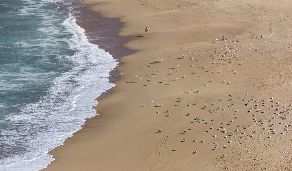 surfcamp-360-porto-novo-santa-cruz-running