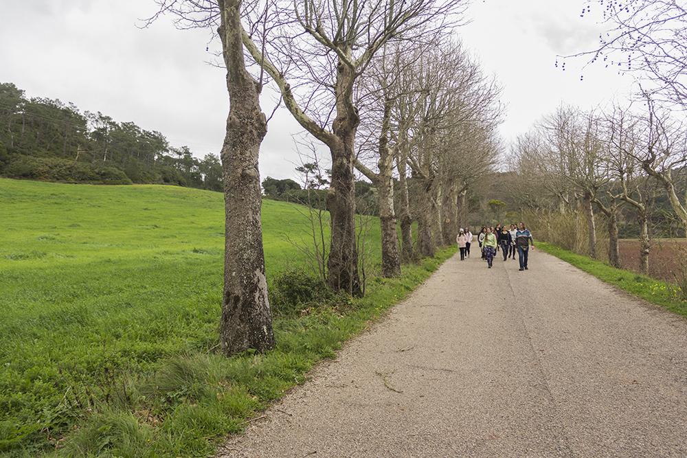 surfcamp-360-caminhada_5