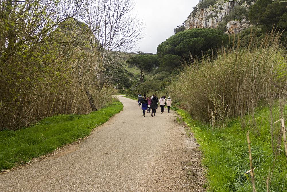 Caminhada Yoga Camp