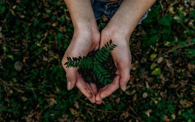 Dia Mundial Do Ambiente | Turismo Responsável